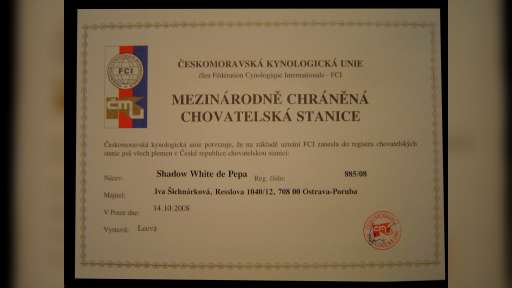Shadow White de Pepa - Julllietka