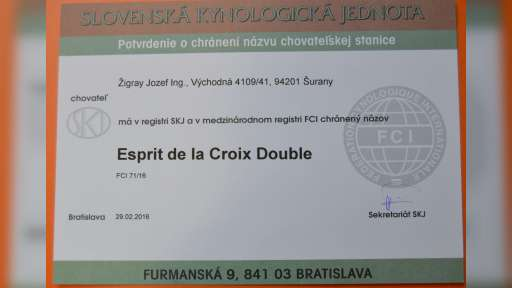 Esprit de la Croix Double - Jozef Žigray